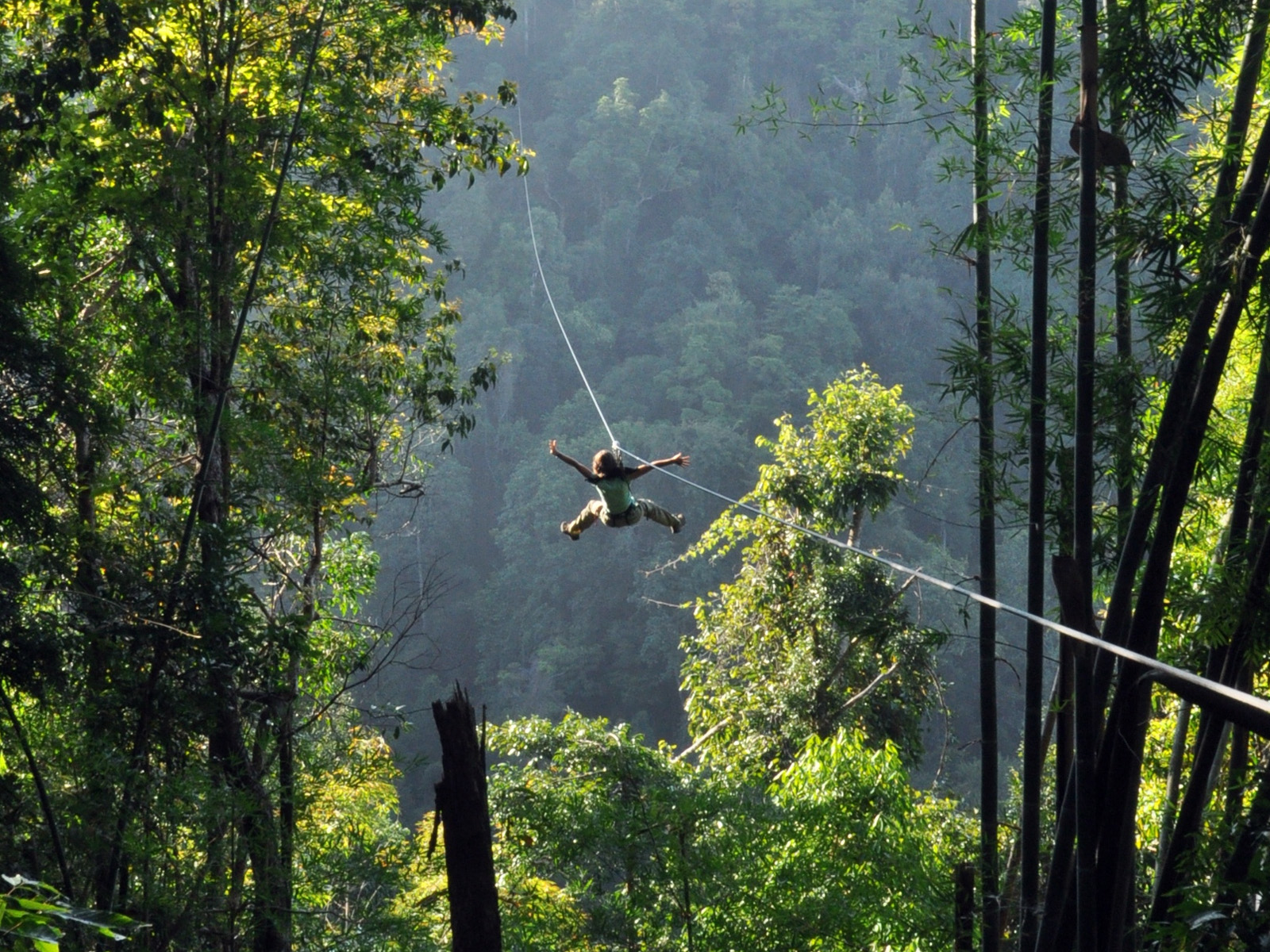 Flight Of The Gibbon | Chiang Mai Trekking | Das beste Trekking in Chiang Mai mit Piroon Nantaya